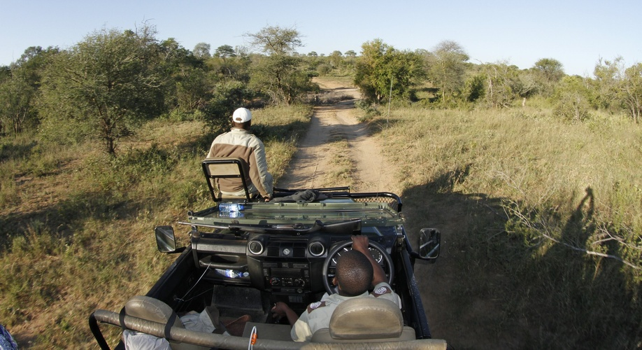 Game viewing, Umlani Bushcamp, Timbavati Private Nature Reserve, Kruger National Park