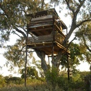 Tree House, Umlani Bushcamp