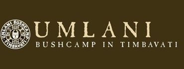 Umlani Bushcamp Accommodation in the Kruger Park - Timbavati Game Reserve Accommodation and Safaris